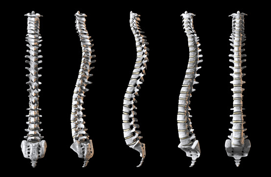 Take care of your back - spinal halth