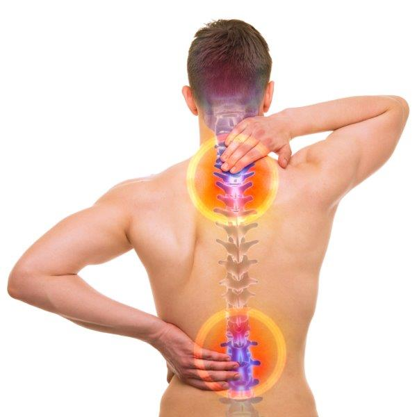 Spinal health and herniated disc prevention with healthy nutrition